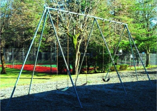 Old swing set needed to go